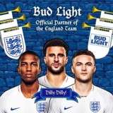 Dilly Dilly!': Bud Light announces new sponsorship of the England Men's Football Team
